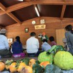 府営公園泉佐野丘陵緑地「秋の郷遊び」体験